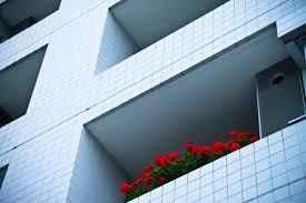 住みながら家を高く早く売るのは難しい?早期高値売却のコツは?