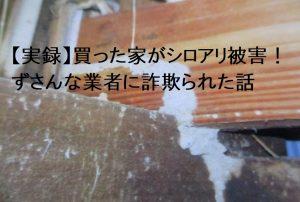 【実録】買った家がシロアリ被害!ずさんな業者に詐欺られた話